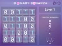 Binary system explanation