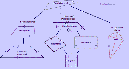 quadrialateral family tree