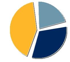IWU Sentinel Picture-splitted-pie-chart2